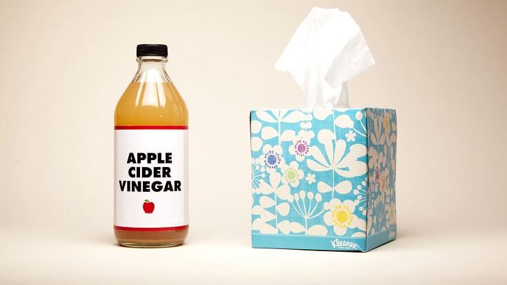 What Kills Fruit Flies: Apple Cider Vinegar