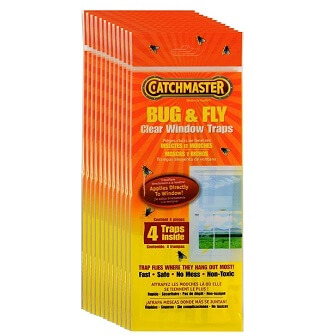 Best Fly Killer: Catchmaster 904-12 Clear Window Fly Trap