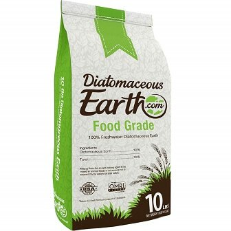 Natural Ant Killer: Diatomaceous Earth