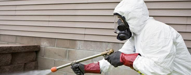 How to Get Rid of Termites: Fumigation