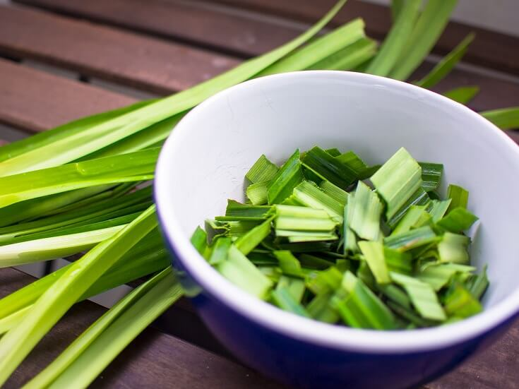 How to Get Rid of Roaches: Pandan Leaves