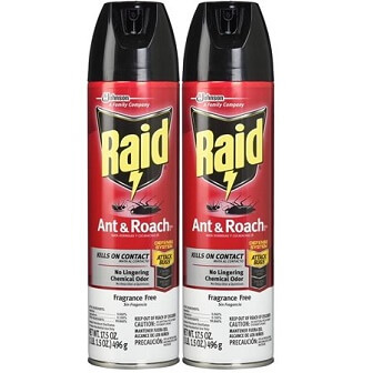 Best Roach Killer: TOP 5 Products That Kill Roaches Effectively