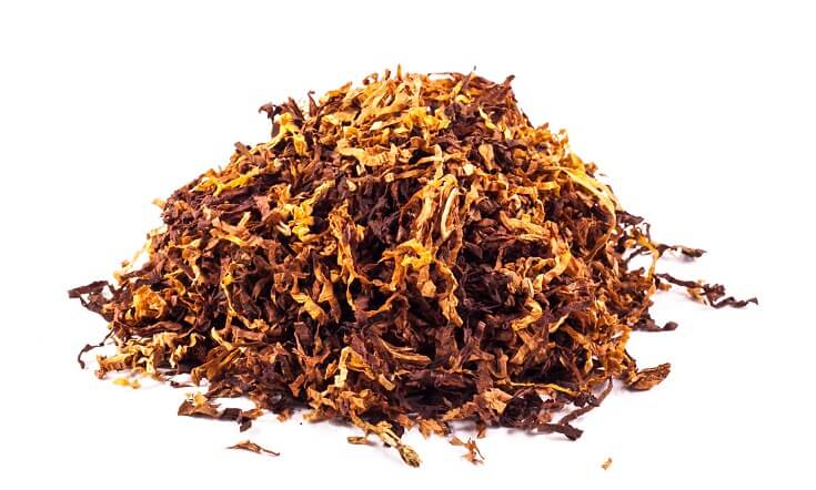 How to Get Rid of Gnats: Tobacco Layer