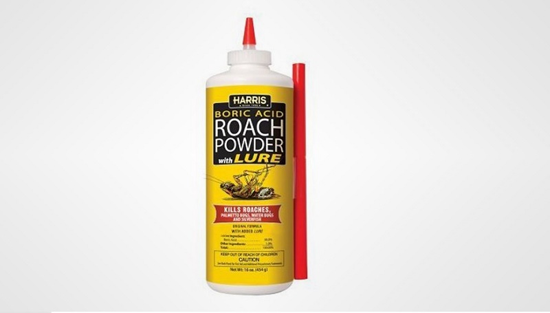Best Roach Killer Reviews: TOP 5 Products That Kill Roaches ...